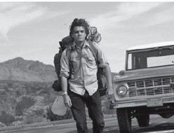 Into the Wild, Review