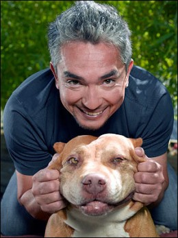 "Cesar Millan with ""Daddy"" - Photo from open.salon.com"