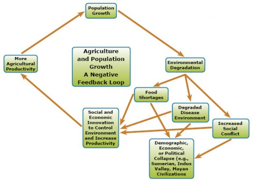 population feedback loops tell us something about how two or more species interact to control population.