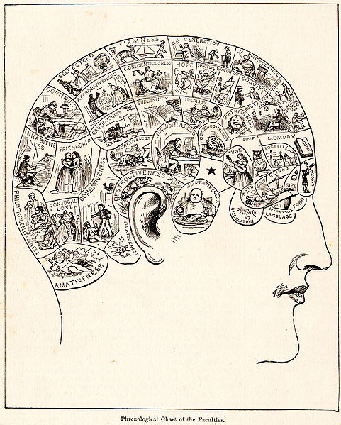 (Phrenology skull map of 1883)