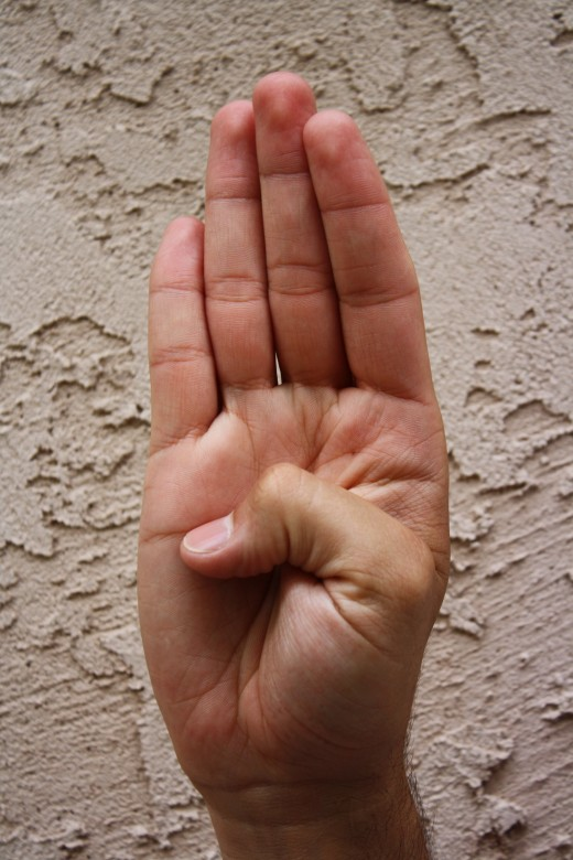 An open palm with the thumb at the center of the palm.