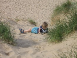 Rolling down the sand dunes