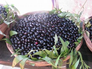 basketful of jamuns ready for sale...
