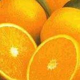 296974 f260 - Health Benefits of Orange (kino)