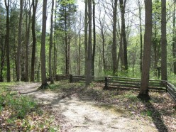 Indiana State Park Pictures - Part Two