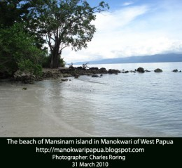 tropical island of Mansinam in Indonesia
