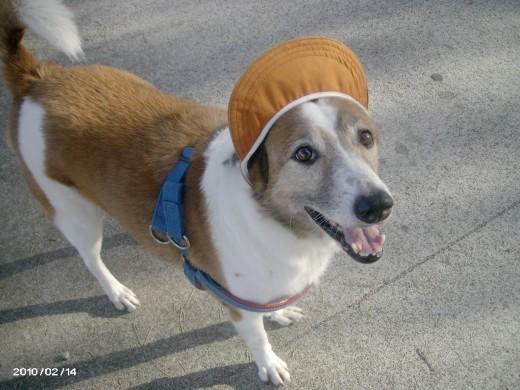 Peso wearing his new Cap