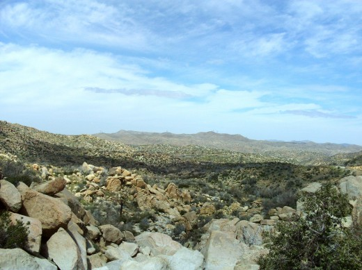 A view of the landscape around The Pinnacles.