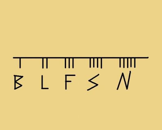B, L, F, S, N