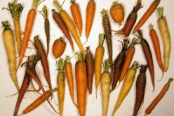 What are the Benefits of Carrots