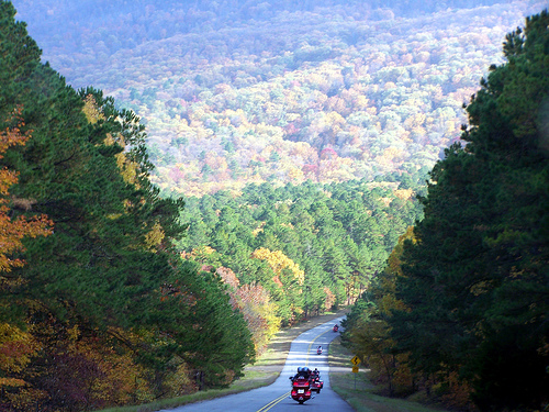 The Talimena Scenic Drive: Views from the Road
