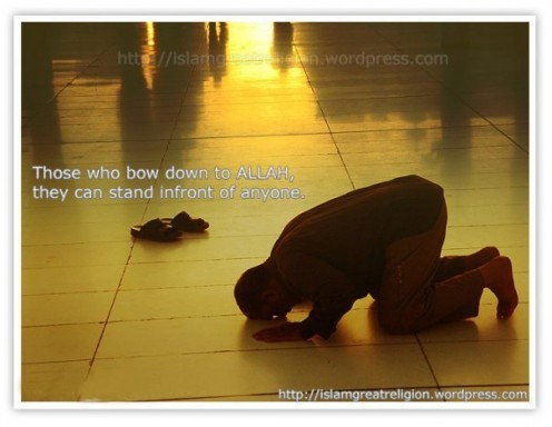 Those who bows down to Allah can stand in front of anyone... Islamic Wallpaper and Images !  http://islam-wallpapers.blogspot.com/  Wallpaper Channel by   http://islamgreatreligion.wordpress.com