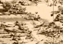 Many poisoned people died and were put in mass graves after the release of toxins.
