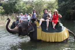 Elephant Back Riding is very popular among tourists