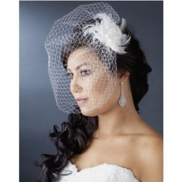 Birdcage Wedding Veil: half veil covering eyes and cheeks