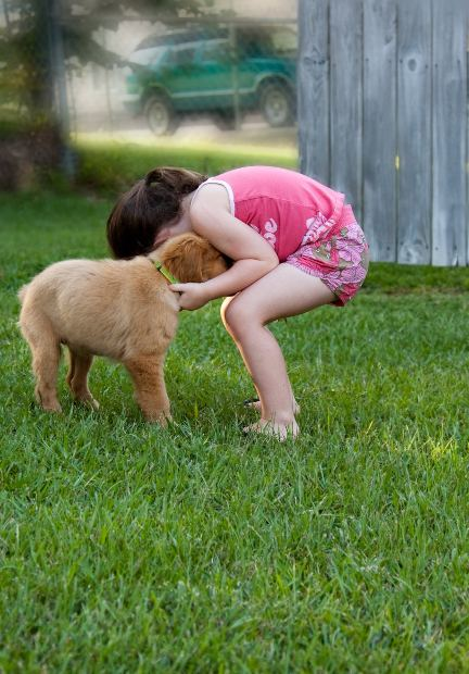 Get your puppy used to children from the critical period of socialization and beyond.