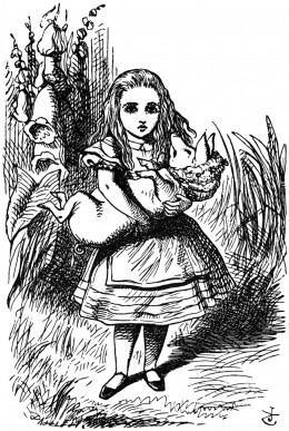 """O Piglet!"" scolded Alice.  ""Not wallowing again!"""