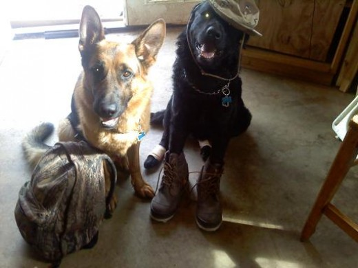 Yager and Gunner ready to go fishing.