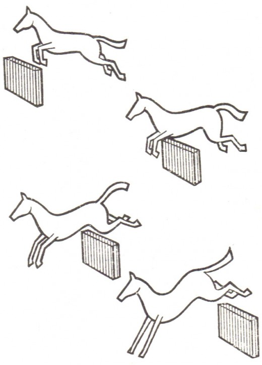 Horses in action: The best time to photograph a jumping horse is at the take-off, or half-way across the hurdle. For the latter the jump must be clean; the take-off is nearly always reasonably safe. Bottom: A horse landing does not look elegant unles
