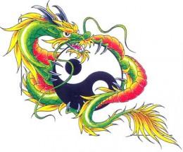 Yin Yang Tattoo, Seekyt