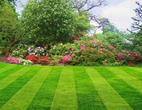 beautiful lawn and mow lines, photo courtesy lgyardservices