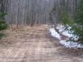 Dirt road/trail by Emily Glahn Eades