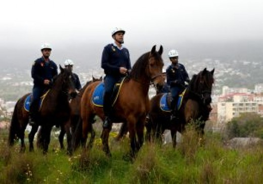 Horses are used by the state to control large numbers of people.