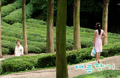 Summer Scent drama courtesy KBS
