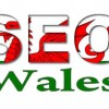 SEO Wales profile image