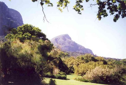 Kirstenbosch Gardens. Photo Tony McGregor