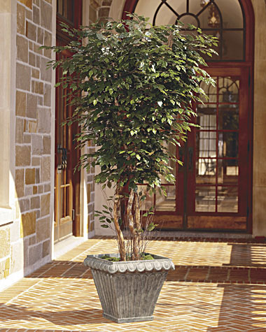 Silk plants and silk trees are the perfect corporate gifts