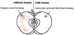 Lemon juices contain vitamin C which is an antioxidant and it prevents oxidation.