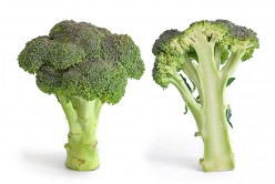 What are the Benefits of Broccoli