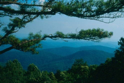 The Blue Ridge Parkway, North Carolina around Mile 230.