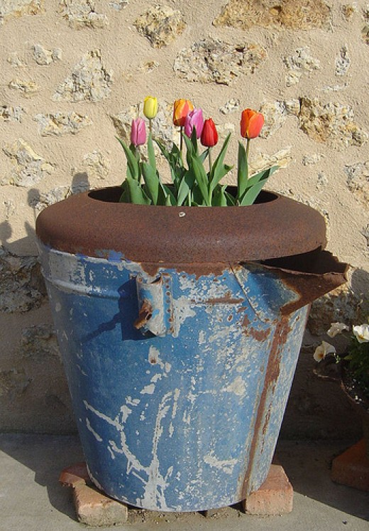 I found this 'planter' in the barn. Ideal for spring bulbs