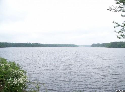 Shearon Harris Reservoir