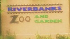 a trip to Riverbanks Zoo