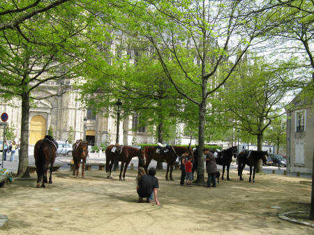 Parc Sainte-Croix with horses and ponies for hire