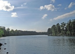 Willamette River   (pictures courtesy wikicommons)