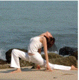 Let Yoga come to you!