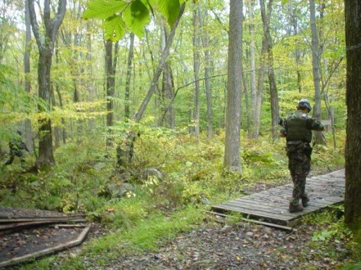 Woodland airsoft