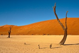 Although often unbearably hot during the day, the desert can become equally cold at night. Be prepared! (Namibia)