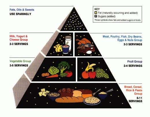 Above is a picture of the USDA food pyramid which helps illustrate a balanced diet.