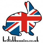 britishbunnies profile image