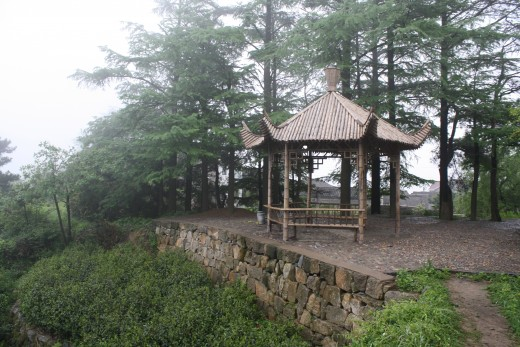 "Bamboo ""pagoda"" near the village."