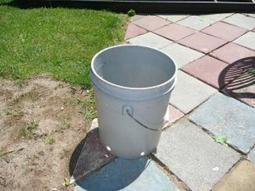 Improvised Bucket Planter