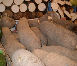 What are the Benefits of Yams