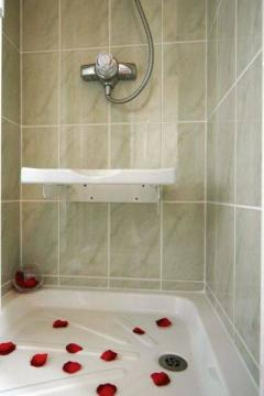 Mounted Handicap Shower Chair (non lifted)