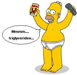 Understanding Triglycerides Levels: What Your Doctor Hasn't Told You