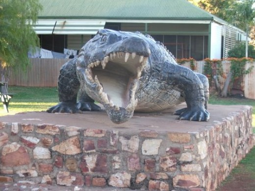 Big teeth! Largest crocodile ever shot, Normanton, Australia Photo: Lissie
